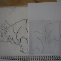 12 first piece of rhino
