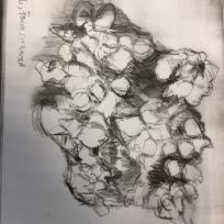 drawingproject (24)