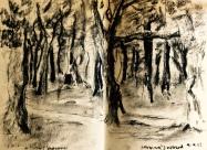 Hermann's wood at Pont de Barret