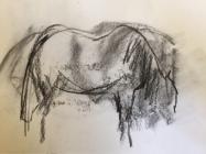 Horse in field, Pont de Barret